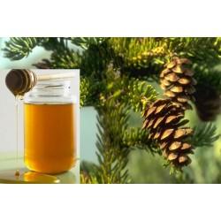 Μέλι Κωνοφόρων (πεύκο και έλατο)